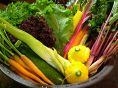 珍しいイタリアン野菜なども六根スタイル