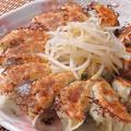 料理メニュー写真一代名物 浜松餃子  10個