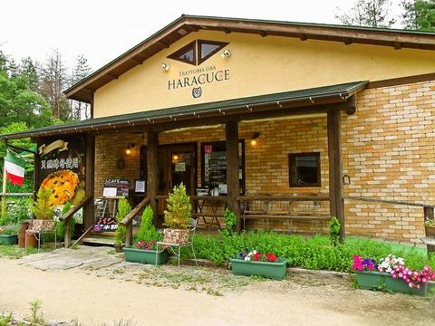ちょっとしたリゾート気分が味わえるテラス席と地元の素材を活かした料理が人気の店。