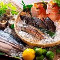 【旬魚×地鶏×地野菜】地物や産地直送の厳選素材
