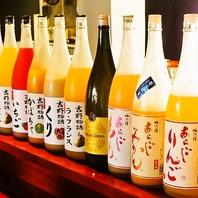 果実酒・梅酒が種類豊富