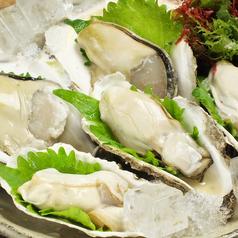 料理メニュー写真島根隠岐産岩牡蠣「春香」