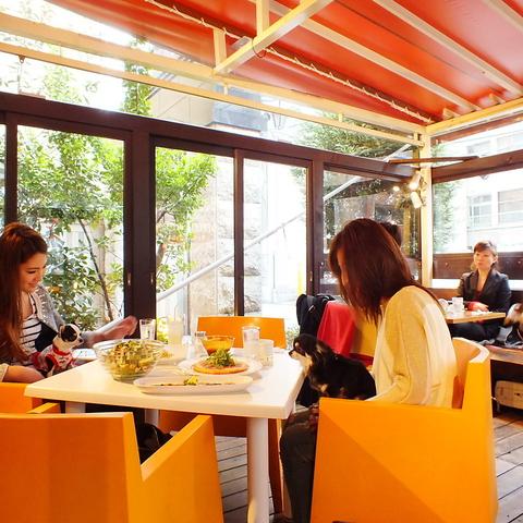 雰囲気抜群のテラスでランチ♪夜はムーディーな雰囲気でカフェ&イタリアン♪