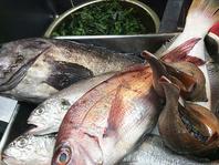 山形の新鮮なお魚がいっぱい