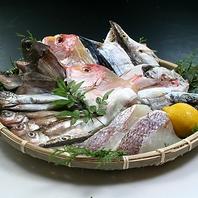 直送新鮮魚介!毎朝仕入れる鮮魚!