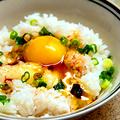 料理メニュー写真朝摘み卵のかけご飯