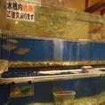 鮮魚が泳ぐ水槽★こちらから獲りたての鮮魚をお楽しみいただけます!