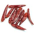 【唐辛子(とうがらし)】…日本でも良く使用される香辛料の一つ。唐辛子に含まれるカプサイシンには発汗作用と脂肪燃焼効果あり★