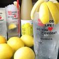レモンサワーの品ぞろえ広島NO1クラス!餃子とレモンサワーとの相性は抜群です!
