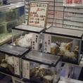 全国各地の絶品牡蠣を取り揃えております