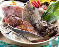 朝採れ 佐島産の新鮮鮮魚