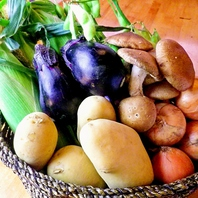 新鮮野菜の美味しいお店。農家直送の野菜は新鮮そのもの