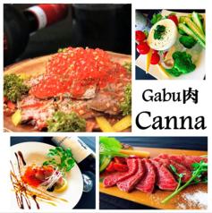 Gabu肉 Canna カンナの写真