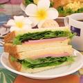 料理メニュー写真ハムチーズサンド