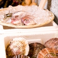 鮮魚、カブトなどの海の幸が並んでます!