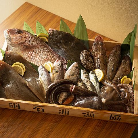 あかし 亭 魚の 棚