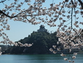 桜の時期は春を感じられる景色が楽しめる。