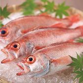 毎朝旬の鮮魚をお造りとしてご提供させて頂きます。