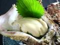 料理メニュー写真岩ガキ(酢のもの・焼きもの・フライ)