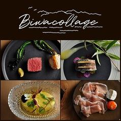 Biwa collageの写真