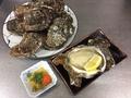 料理メニュー写真男鹿産岩牡蠣
