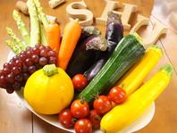 こだわり野菜が盛りだくさん♪