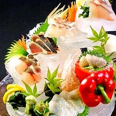 料理メニュー写真本日の直送鮮魚刺し(約2人前)
