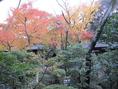 秋の紅く染まった木々は見ものです。
