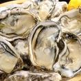 ニュージーランド産「生牡蠣」。毎日数量限定で~す♪