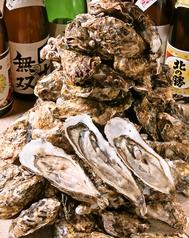 北海道居酒屋 髭 ひげの特集写真