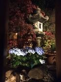 夜の2Fの箱庭です。お昼と夜ではまた違った雰囲気が楽しめます。