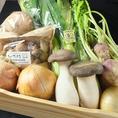 【4】野菜ソムリエ『のら』…全国から【本物の産直】にこだわり選んだ生産者の見える美味しい理由がわかるお野菜です。