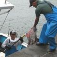 地元の漁師も太鼓判!!水揚したばかりの魚を