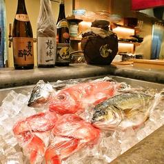 カウンターには新鮮な旬の食材が並びます♪目で舌で感じて料理とお酒をたしなみごゆっくりお寛ぎください。