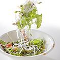 食べれば納得!新鮮野菜使用!串の輪の厳選サラダは4種類!