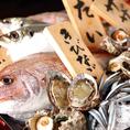 【味へのこだわり】熊本・牛深から新鮮なお魚を毎日直送!熊本の海の幸が味わえます!