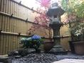 昼の坪庭。
