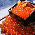 料理メニュー写真いくらと雲丹のこぼれ升寿司