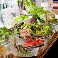 新鮮野菜が並ぶ自慢のサラダバー