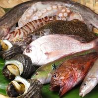 瀬戸内の鮮魚を中心とした仕入れ
