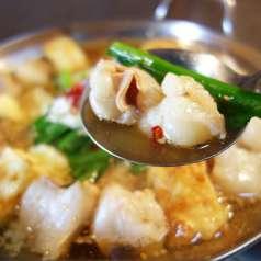 日本のもてなし 健美食彩 扇子の特集写真