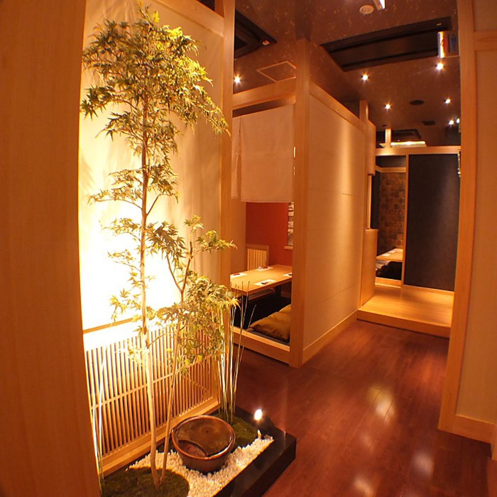 季節料理×お酒 結い-yui-|店舗イメージ7