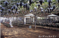 浅間園の写真