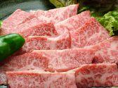 五十六 熊本のおすすめ料理3