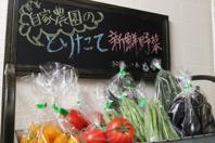 毎朝通れたての新鮮野菜を使用◎販売も行っております♪