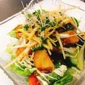 料理メニュー写真揚げカンパチ葱しそサラダ