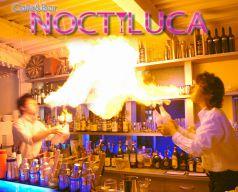 ノクティルーカ NOCTILUCAの写真