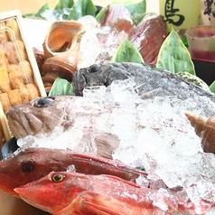 新潟ふるまち 志津川水産 一家部のコース写真