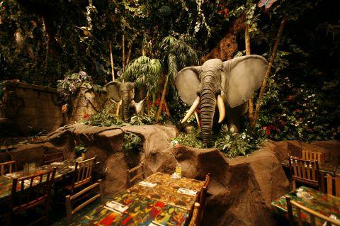 熱帯雨林のレストランでリゾート気分のお食事を楽しんでは?