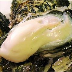 生でも美味しい新鮮牡蠣をご用意!